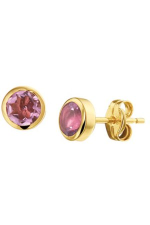 The Jewelry Collection Oorknoppen Amethyst - Geelgoud